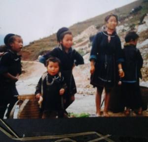 blue hmong