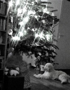 kerst youp