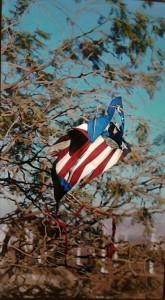 vlag in de boom