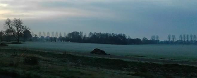 witte velden