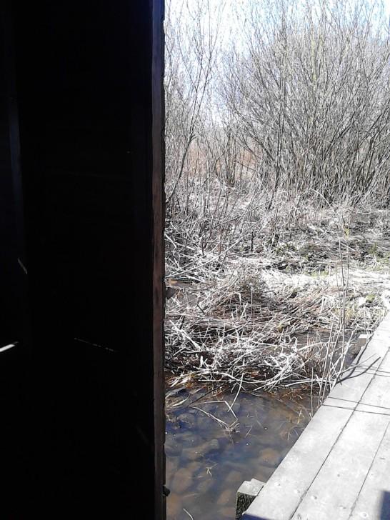 vanuit de hut kijkend