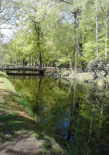 groen brug water