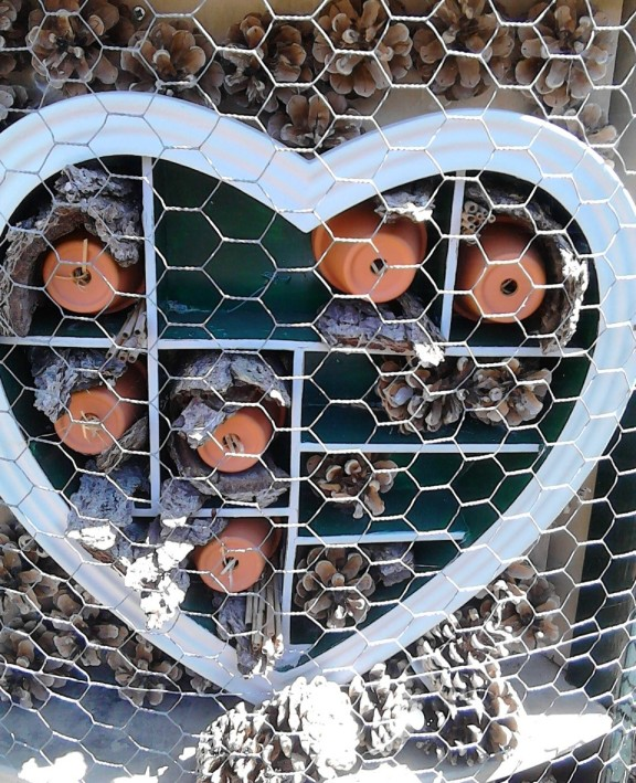 insektenhotel hart
