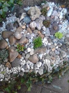 stenentuin