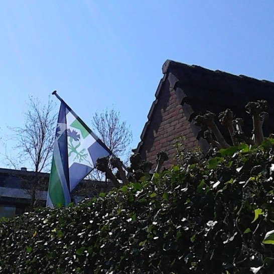 vlag2