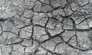 droge grond